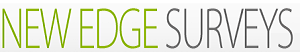 New Edge Surveys Review