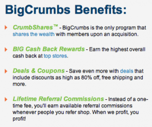 Big Crumbs Review