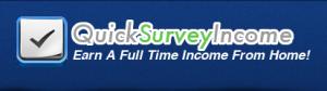quick survey income review