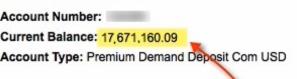 auto profit replication scam